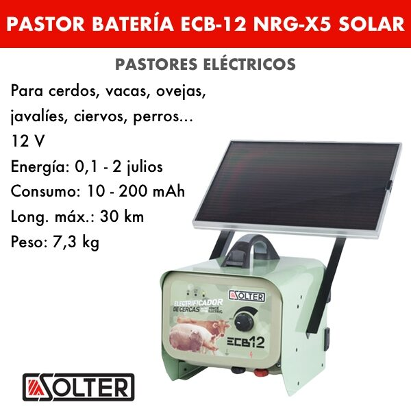 PASTOR BATERÍA ECB-12 NRG-X5 SOLAR