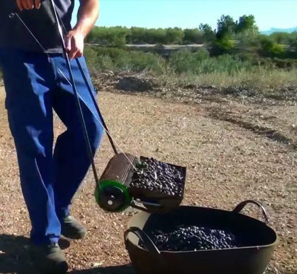 Nr. 1 Olivenpflücker gebohrte Schüssel