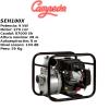 Motobomba gasolina Campeon SEH100X