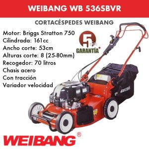 Cortacesped WEIBANG WB 536SBVR