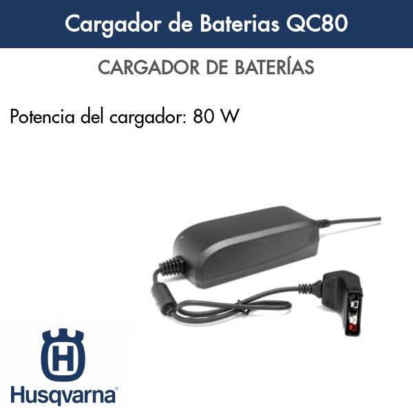 Cargador de Baterias QC80