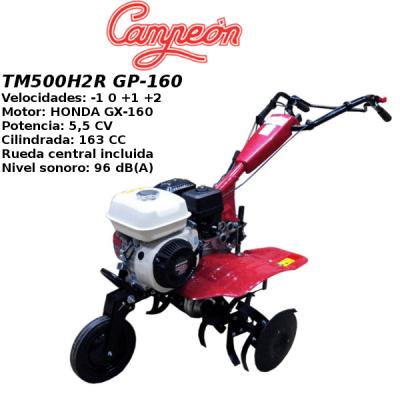 Motoazada Campeon TM500H2R GP-160