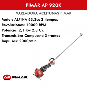 Vareadora Gasolina PIMAR AP 920 K