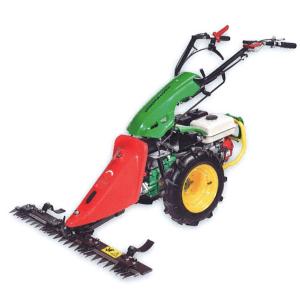 Motosegadora TPG 300
