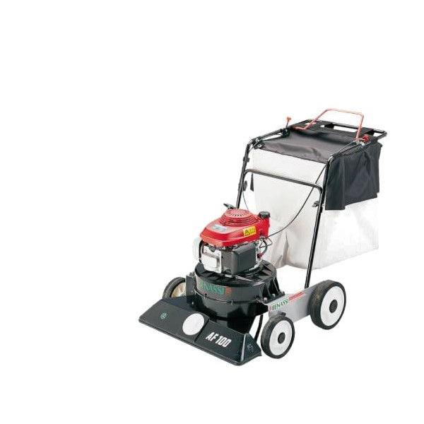 Benassi AF100 leaf vacuum cleaner