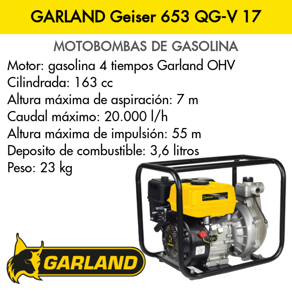 Motobomba Garland Geiser 653 QG-V 17