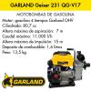 Motobombas GARLAND Geiser 231 QG-V17
