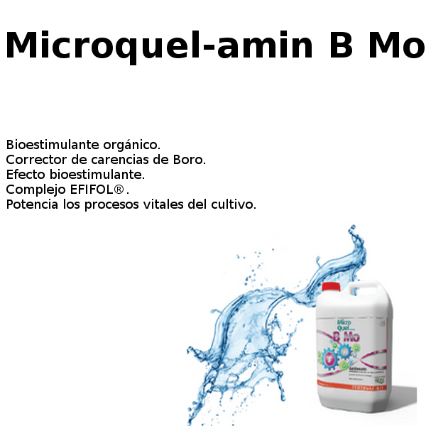 microquel-amin B mo