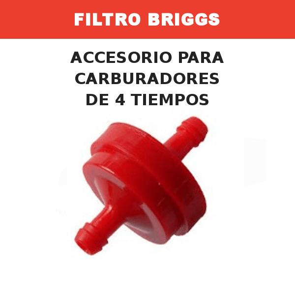 9 Filtro briggs