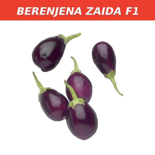 BERENJENA ZAIDA F1
