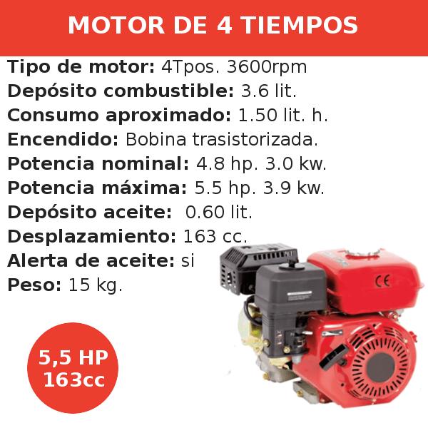 Motor 4 tiempos 163 cc