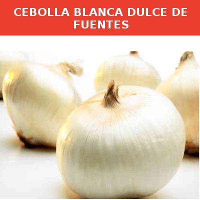 Semillas Cebolla Blanca Dulce de Fuentes