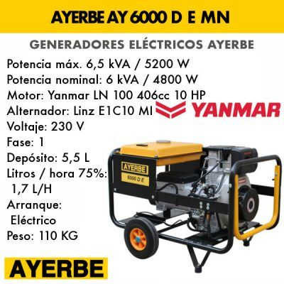 Generador eléctrico diesel Ayerbe AY 6000 D E MN