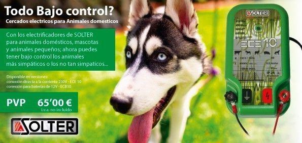 pastores electricos para perros