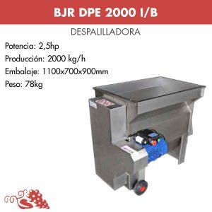 DPE2000IB