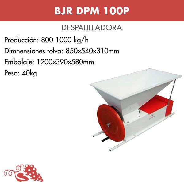 DPM100P