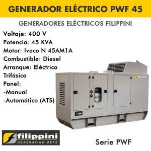 Generador eléctrico Filippini PWF45 45 KVA Trifásico