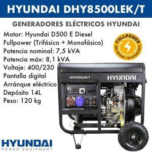 Generador-electrico-Hyundai-DHY8500LEK-T-Diesel-Trif-A-E-1