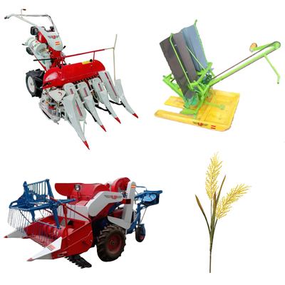 Maquinaria para el arroz