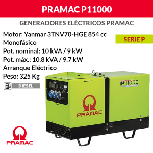 P11000
