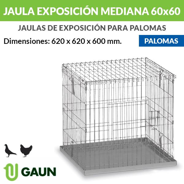 Jaula exposición palomas mediana 60x60
