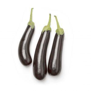 Planta de Berenjena larga negra
