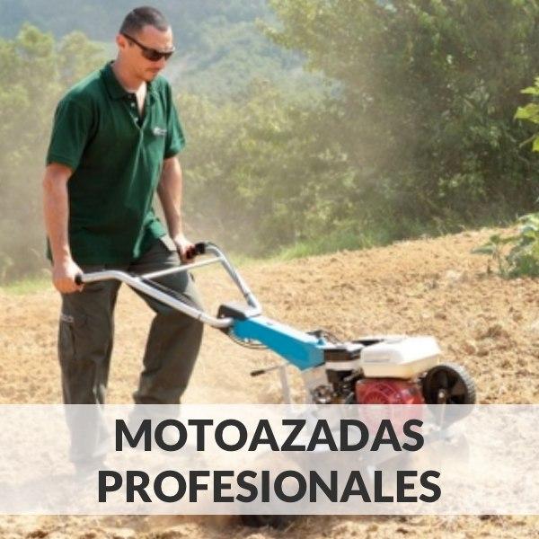 Professionelle Motorhacken