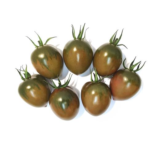 Plantel de Tomate cherry pereta negro