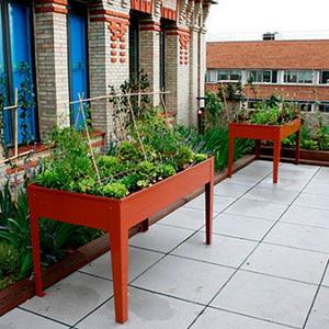 huerto en terraza o patio