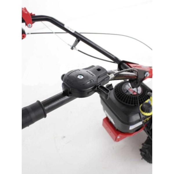 Motosegadora autopropulsada de gasolina Eurosystems P55