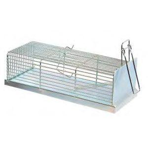 trampa cincada para atrapar ratas