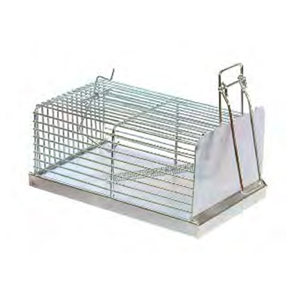 trampa cincada para ratas