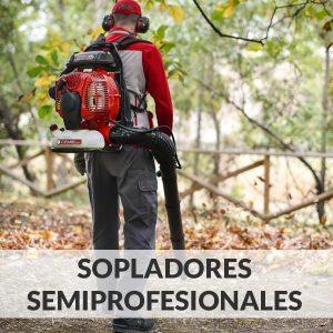 Sopladores de hojas semiprofesionales