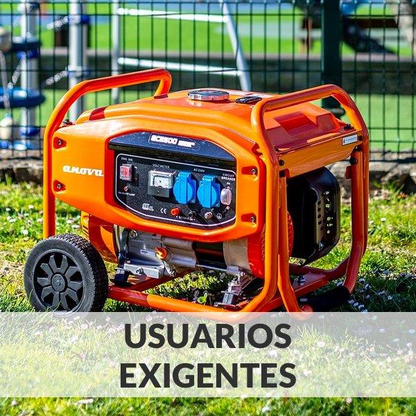 Generadores Eléctricos - Usuarios Exigentes
