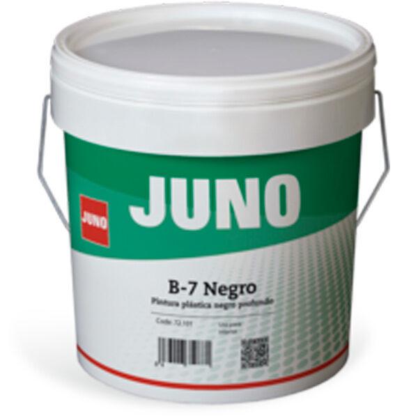 Juno B-7 Interior Paint (Black)