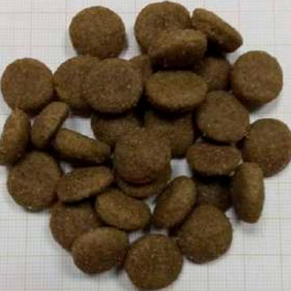 Pienso para perros Techno Diet Super Premium Line Adult Salmon SP2 15Kg